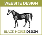 Black Horse Design Website Design (Derbyshire Horse)