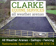 Clarke Equine Services 2019 (Derbyshire Horse)