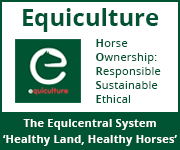 Equiculture 01 (Derbyshire Horse)