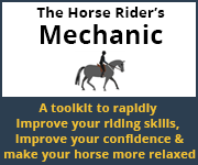 The Horse Rider's Mechanic 01 (Derbyshire Horse)