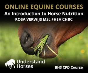 UH - An Introduction To Horse Nutrition (Derbyshire Horse)