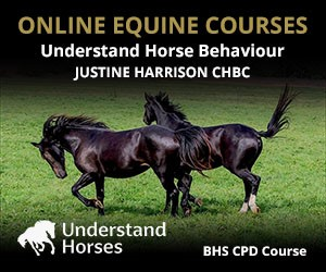 UH - Understand Horse Behaviour (Derbyshire Horse)